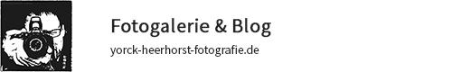 yorck-heerhorst-fotografie.de